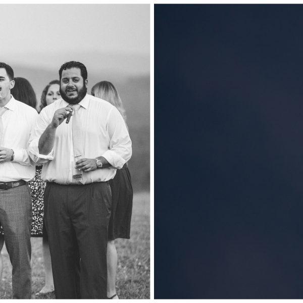 Lisa & Lyle   Grace Estate Winery Wedding   Crozet, VA