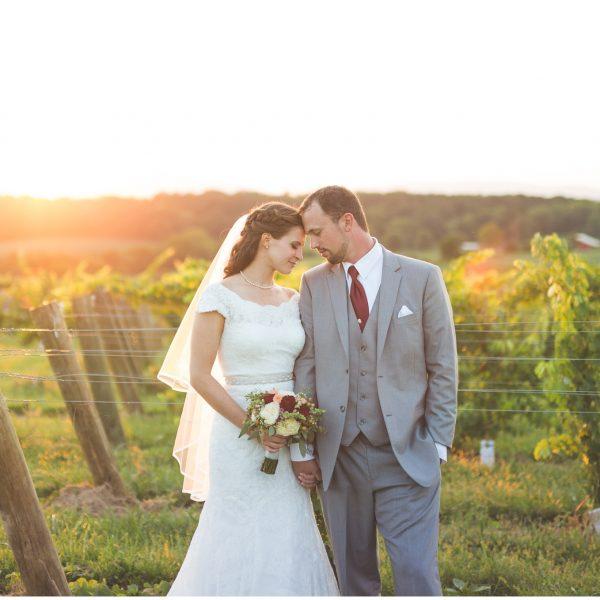 Catherine & Daniel | Barren Ridge Vineyards Wedding