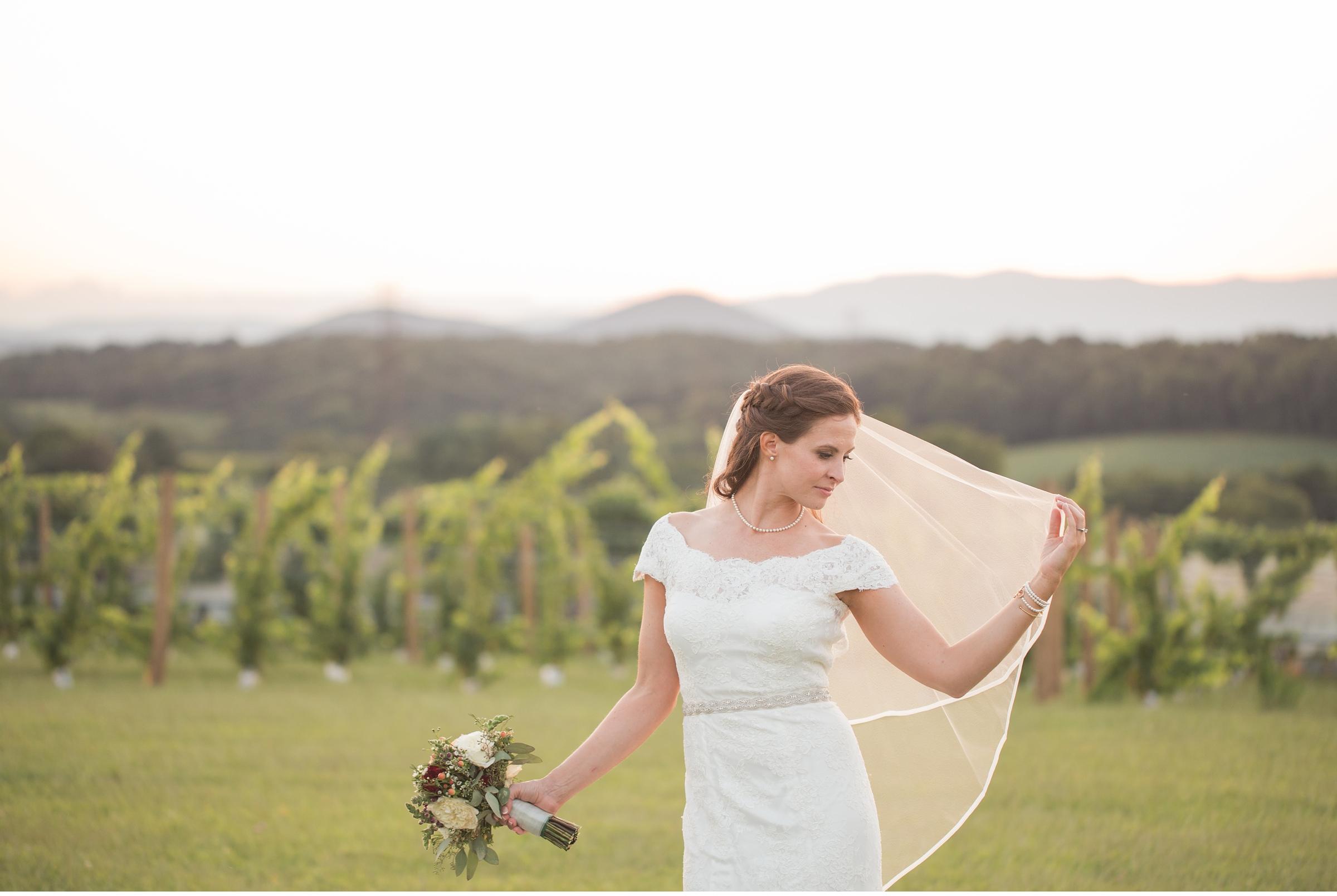 Barren Ridge Vineyards Wedding
